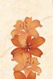 Декор Нефрит-керамика Агидель 04-01-1-06-03-23-098-1 30x20 Бежевый