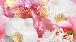 Декор Ceradim Vision Dec Fusion Panno A 25x45