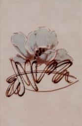 Декор ВКЗ Аликанте  розовый 20x30
