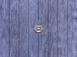 Декор Сокол Регата D732 SDS8 орнамент полуматовый 44х33