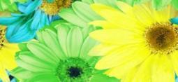 Бордюр Нефрит-керамика Вальс 05-01-1-93-00-81-074-0 25x11.5 Зелёный
